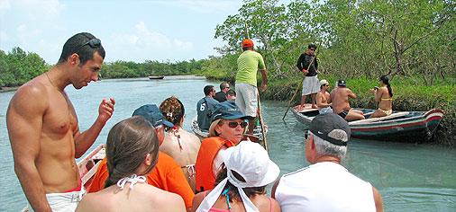 jeri_mangroves